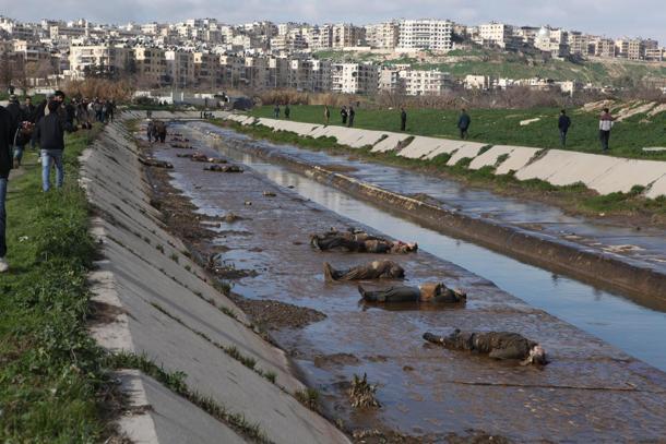 SIRIA: ALEPPO, DECINE DI GIOVANI 'GIUSTIZIATI' SOMMARIAMENTE