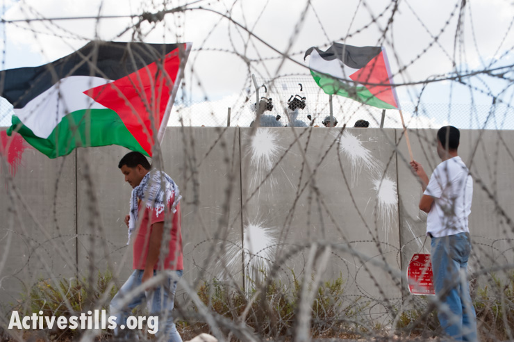 Protest against the wall, Bil\\\'in, West Bank, 4.10.2013