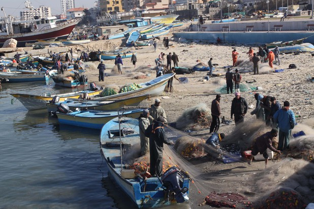 Palestinian fishermen collect fish from their nets at the port in Gaza City