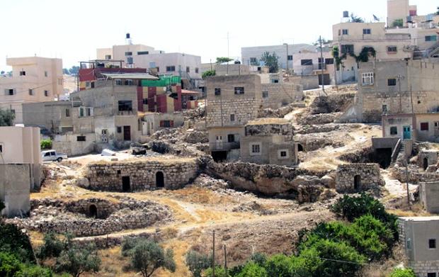 IN DIRETTA DAL PROGETTO. Sovranità alimentare a sud di Hebron